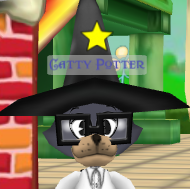 Catty Potter