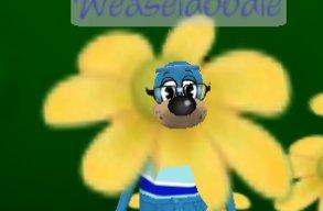 Wacky Weaseldoodle